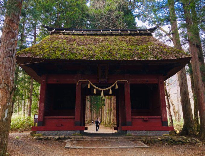 戸隠神社 奥社 随神門